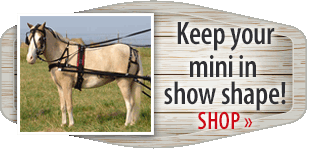 Keep your mini in show shape!