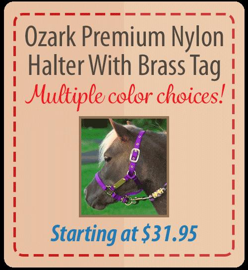 Ozark Personalized Brass Tag Nylon Halter