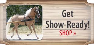 Get Show-Ready! Shop Now