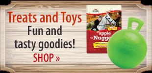 Toys & Treats! Shop Now