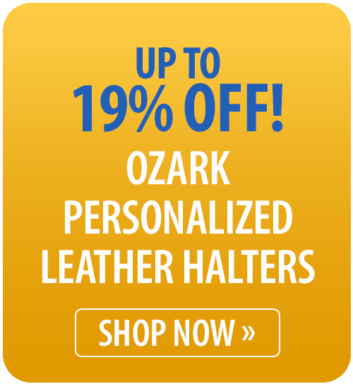 Ozark Personalized Leather Halters