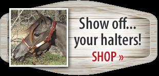 Mini Show Halters! Shop Now