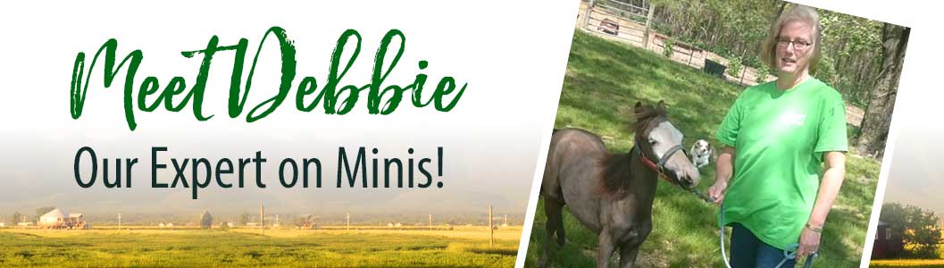 Meet Debbie! Our expert on minis!