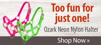 Ozark Neon Nylon Halter! Shop Now