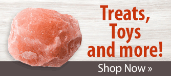Treats, Toys and more!! Shop Now