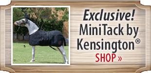 Kensington! Shop Now
