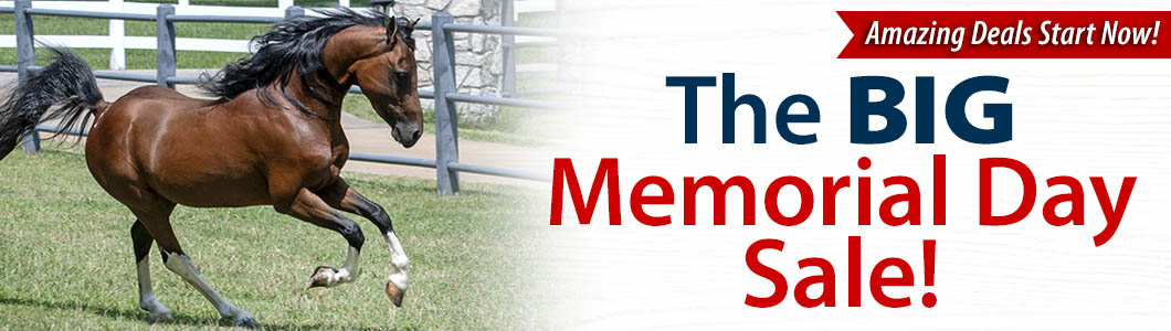 The BIG Memorial Day Sale!